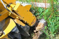 Ruislip tree stump grinding services